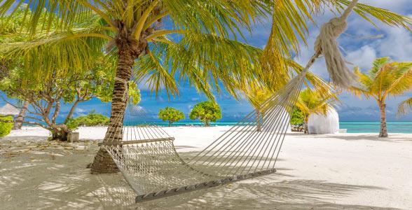 Private Island Rentals