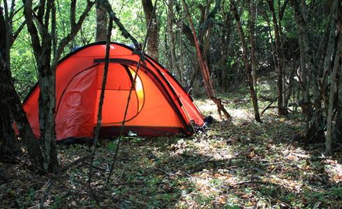 Tent in jungle