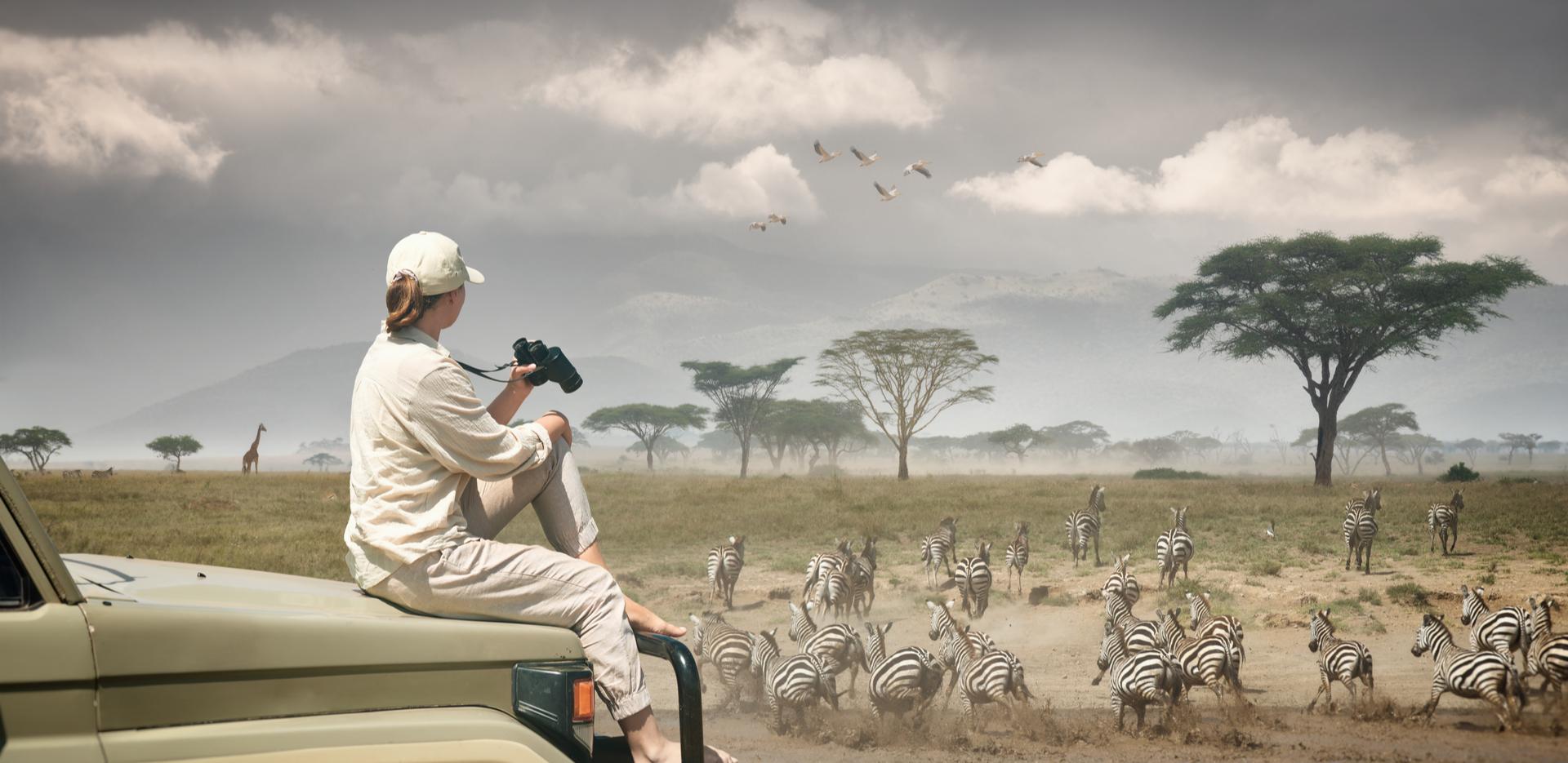 Wildlife Holiday with Club Mahindra