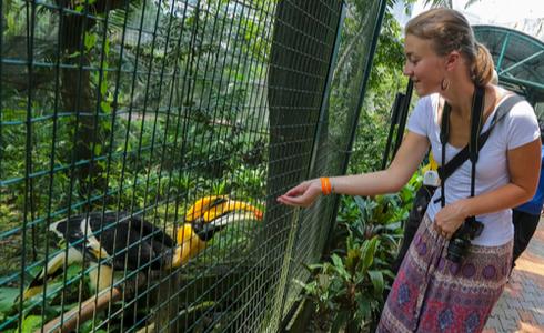 Places to Visit Kuala Lumpur - KL Bird Park