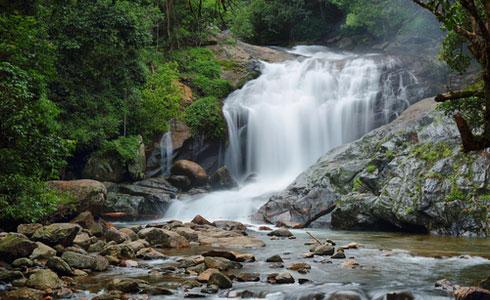 Lakkam Waterfall Munnar