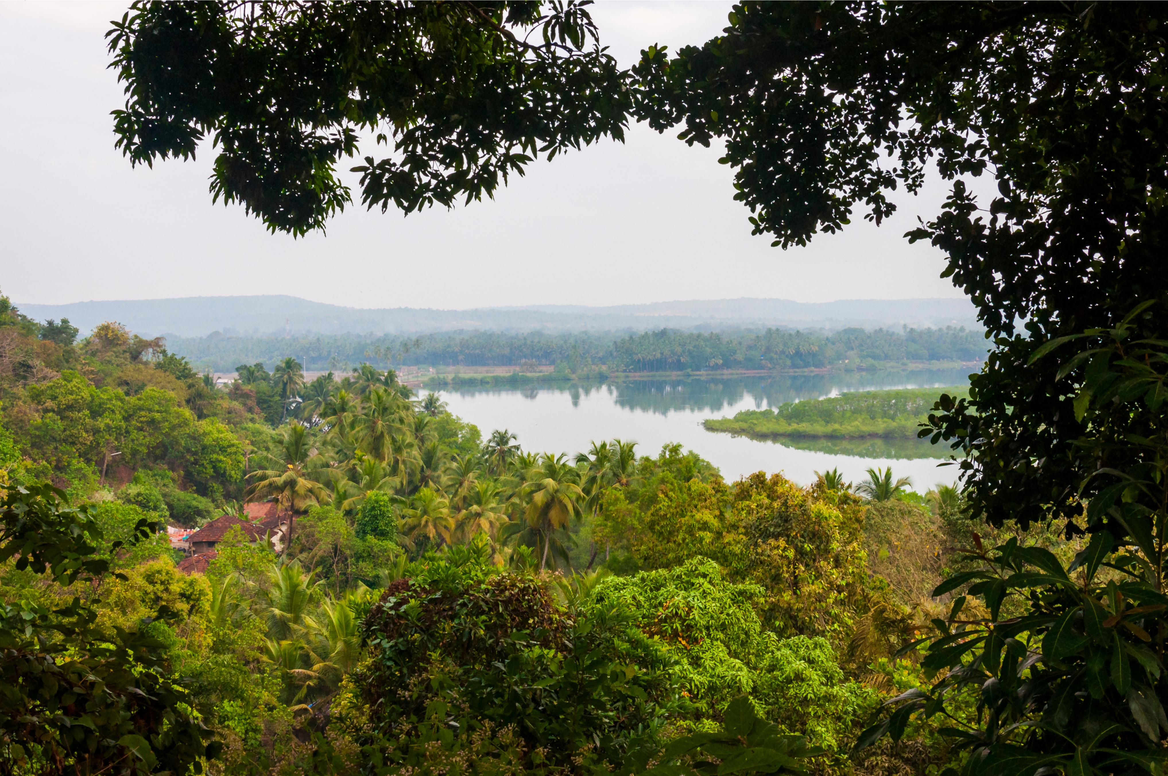 Emerald Palms in Goa