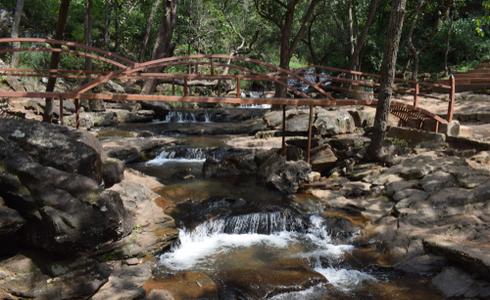 Panchmarhi Reserve