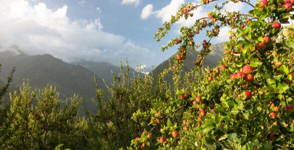 Parvati Valley - Discover Himachal Pradesh