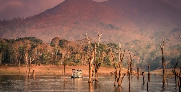 Travel Itinerary for South India - Periyar National Park