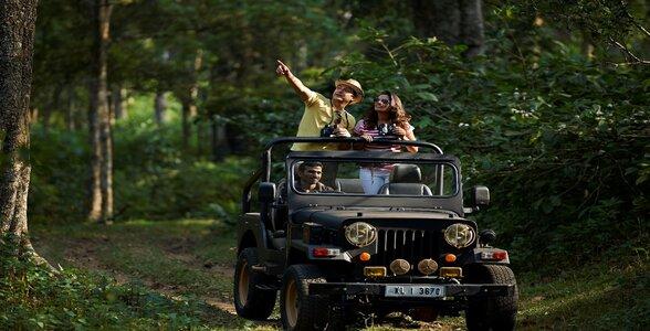 Munnar - safari at Eravikulam National Park