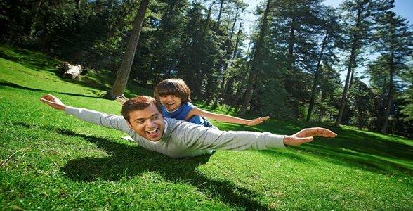 Shimla Resort