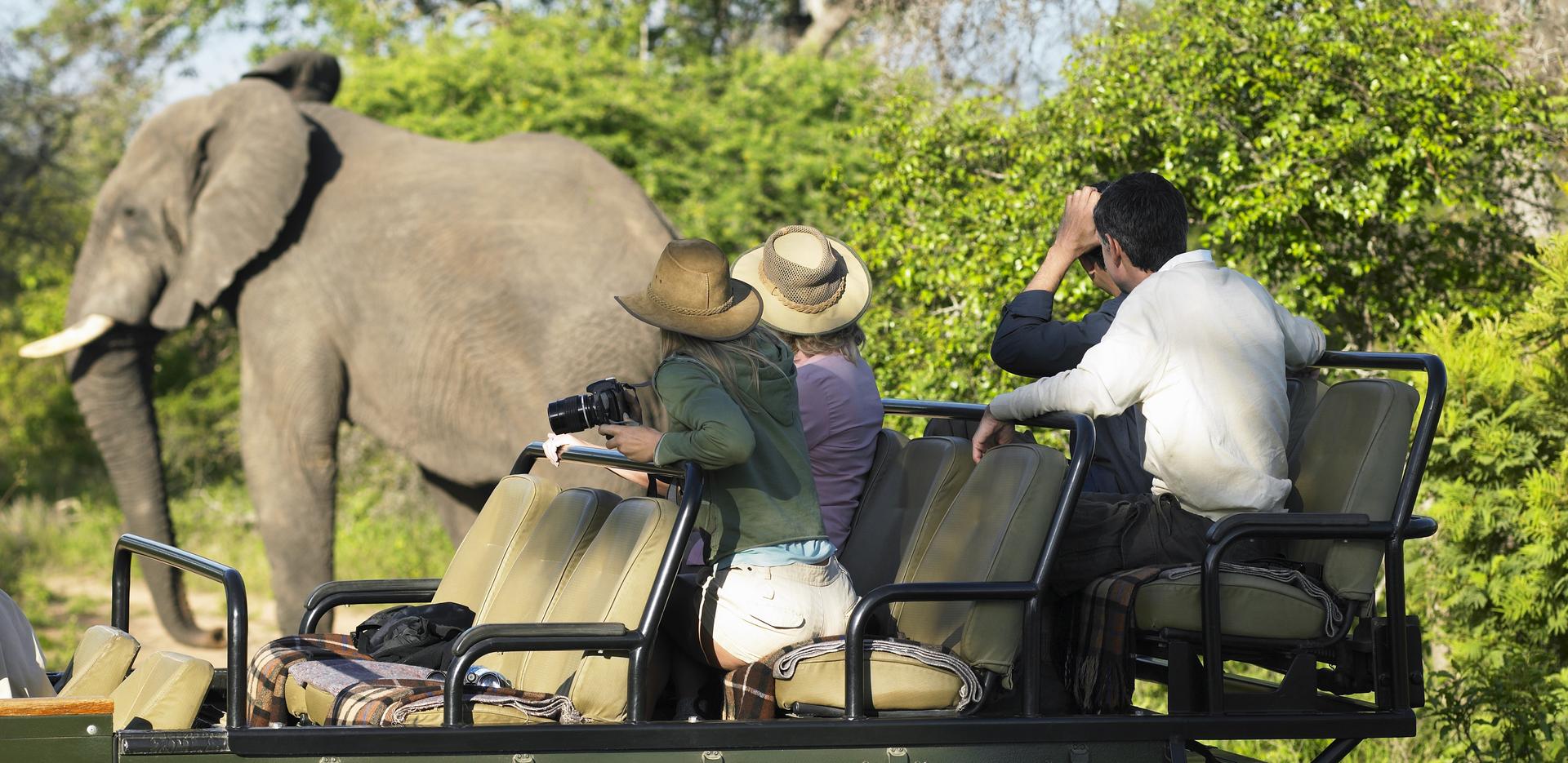 Corbett National Park, Jungle Safari