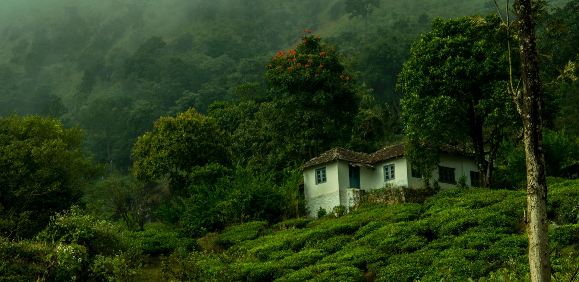 District Wayanad, Kerala