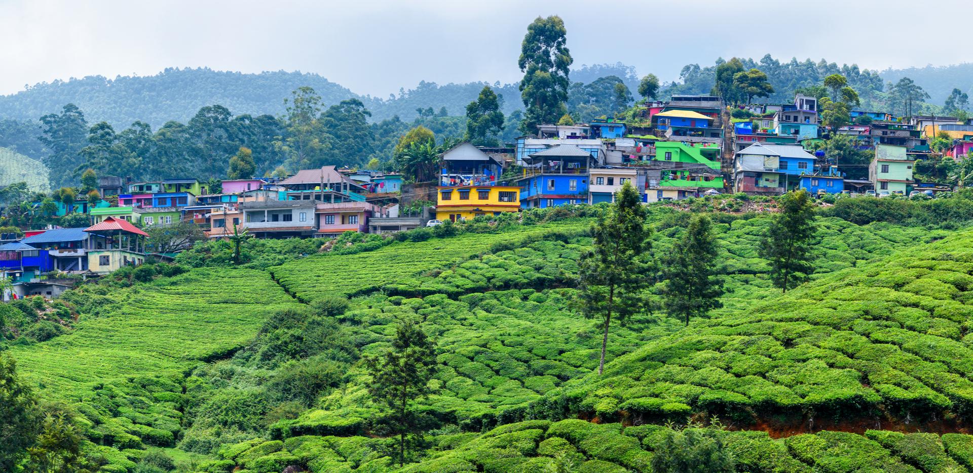 Munnar Town, Kerala