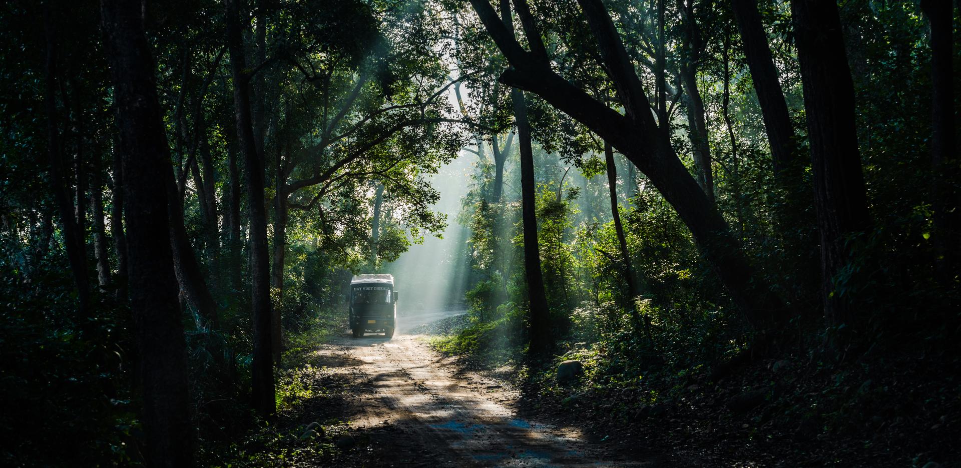 The Jim Corbett National Park