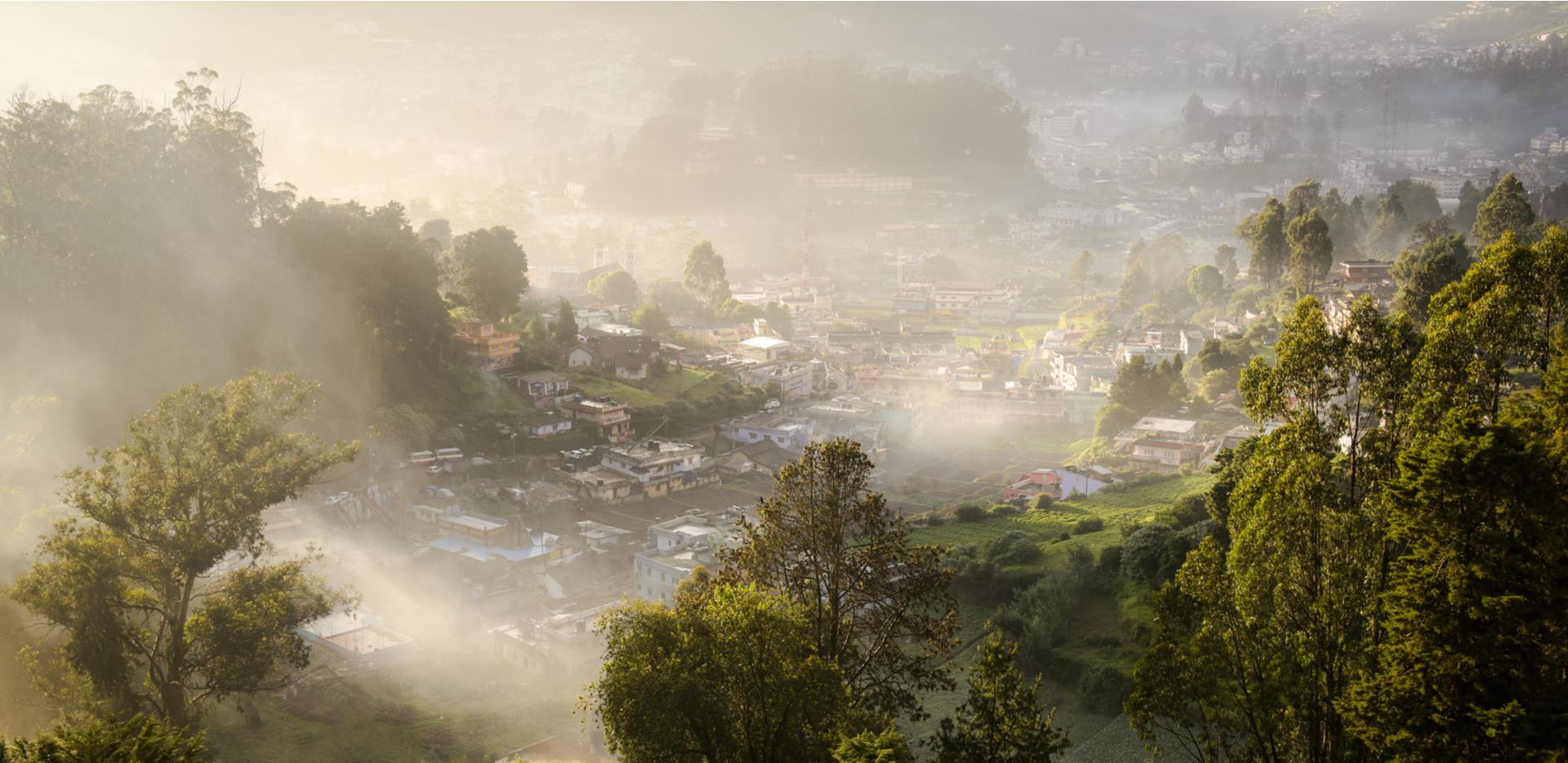 Misty morning in Tamil Nadu