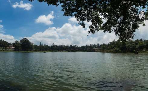 Emerald Lake in Yercaud