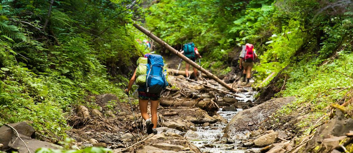 The Mountains Beckon - Go Trekking This Summer!