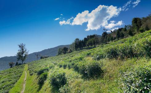 Places to Visit Sikkim - Namchi