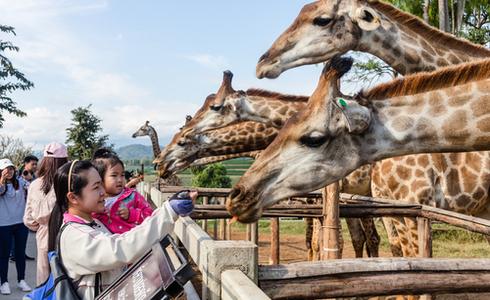 Places to Visit Bangkok - Siam Paragon